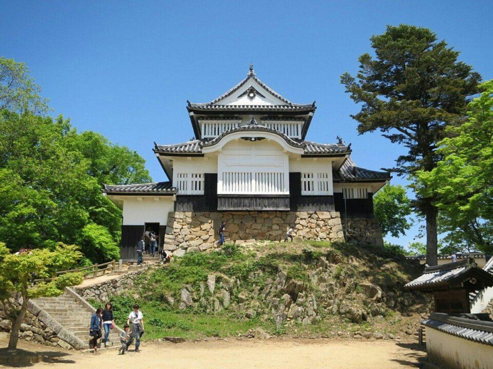 I Castelli originali del Giappone